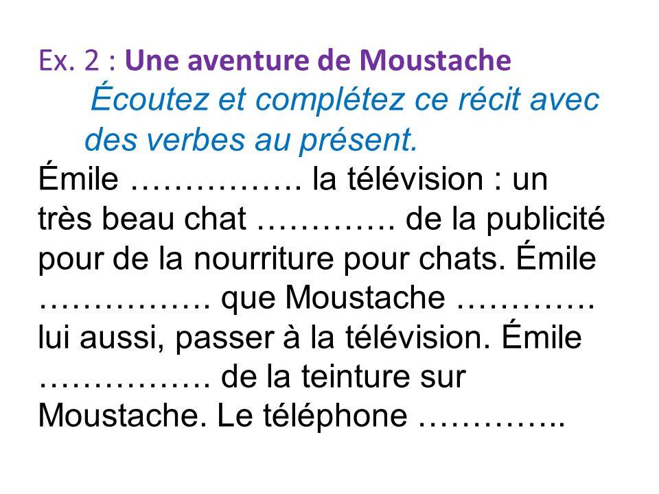 Ex. 2 : Une aventure de Moustache