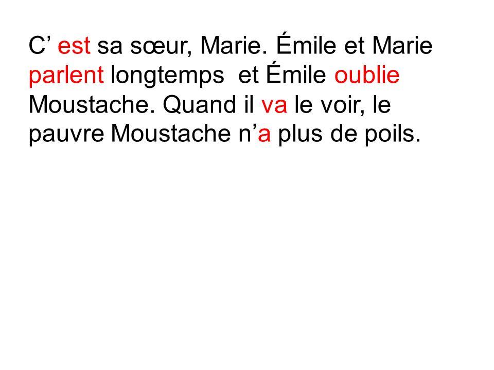 C' est sa sœur, Marie. Émile et Marie parlent longtemps et Émile oublie Moustache.