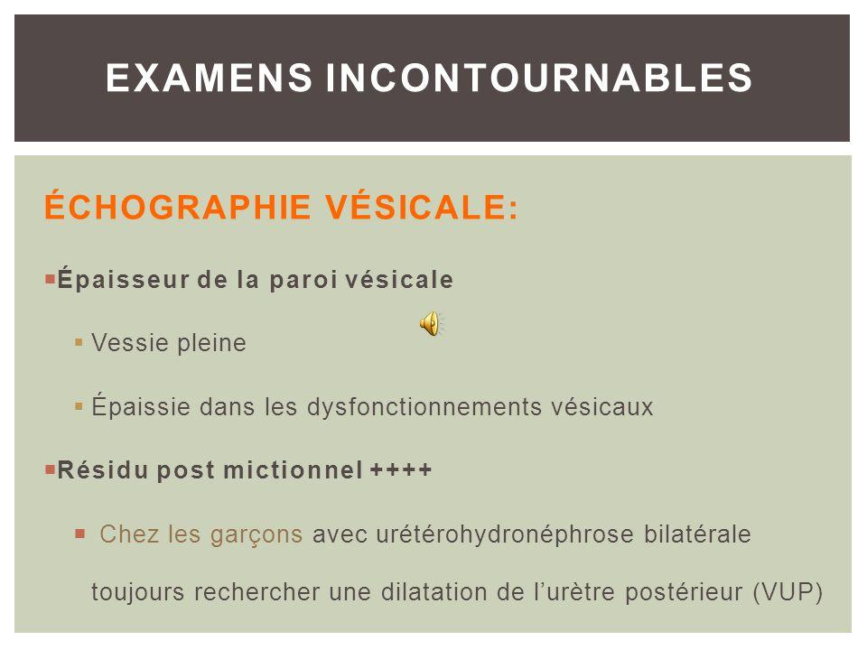 EXAMENS INCONTOURNABLES