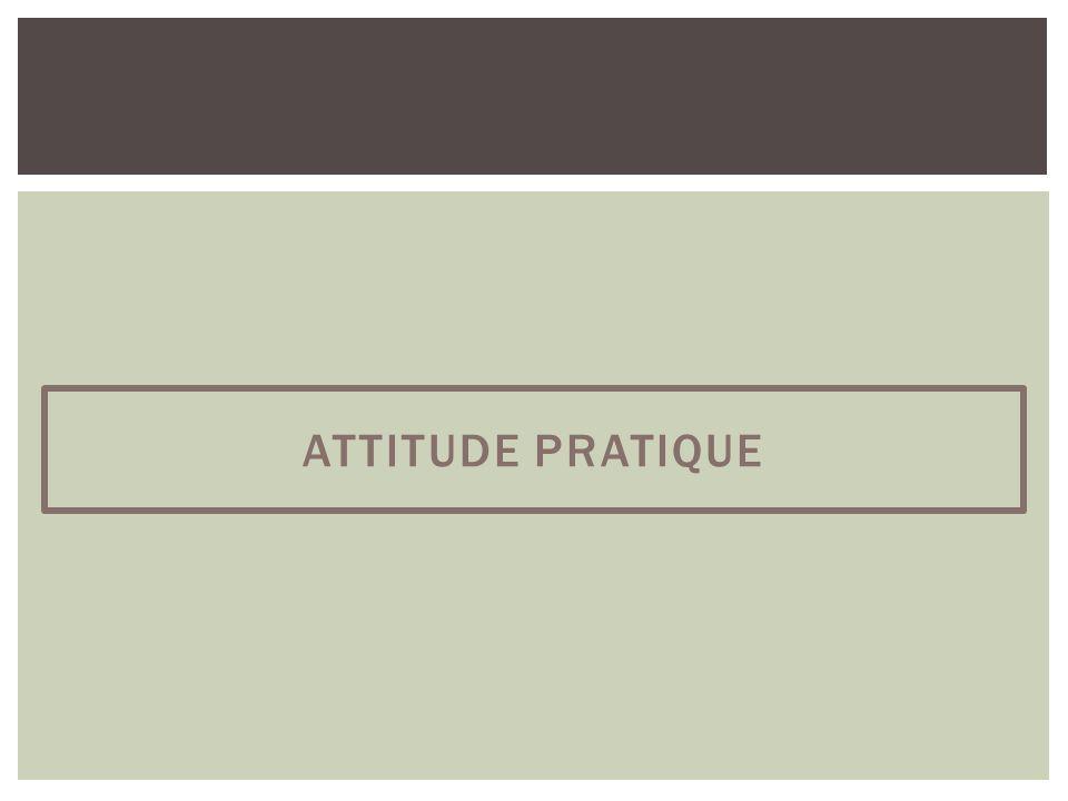 ATTITUDE PRATIQUE