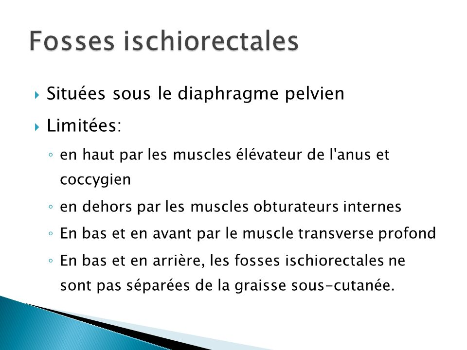 Fosses ischiorectales