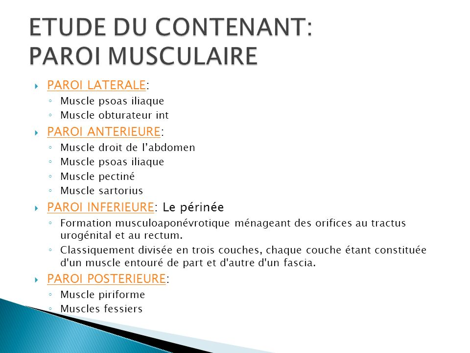 ETUDE DU CONTENANT: PAROI MUSCULAIRE