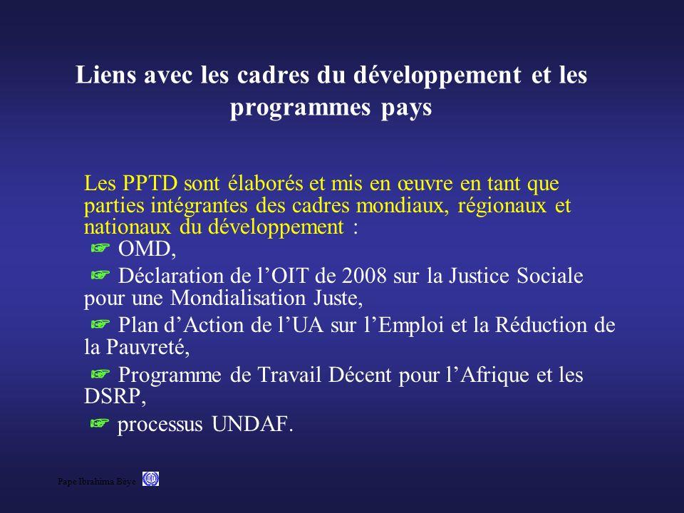 Liens avec les cadres du développement et les programmes pays