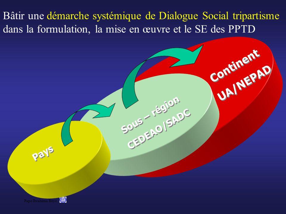 Bâtir une démarche systémique de Dialogue Social tripartisme dans la formulation, la mise en œuvre et le SE des PPTD
