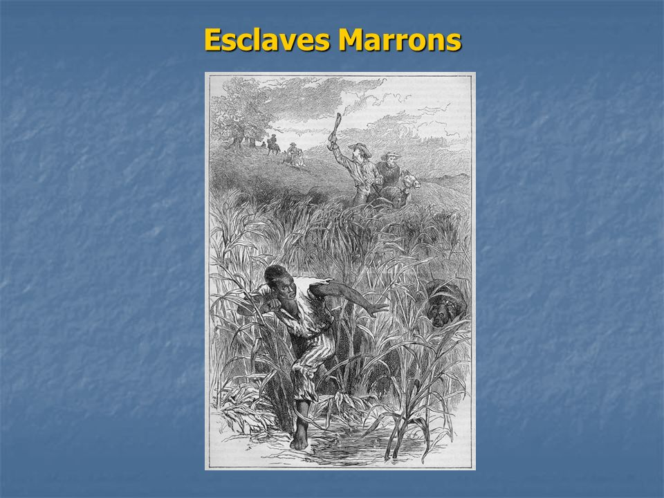 Esclaves Marrons