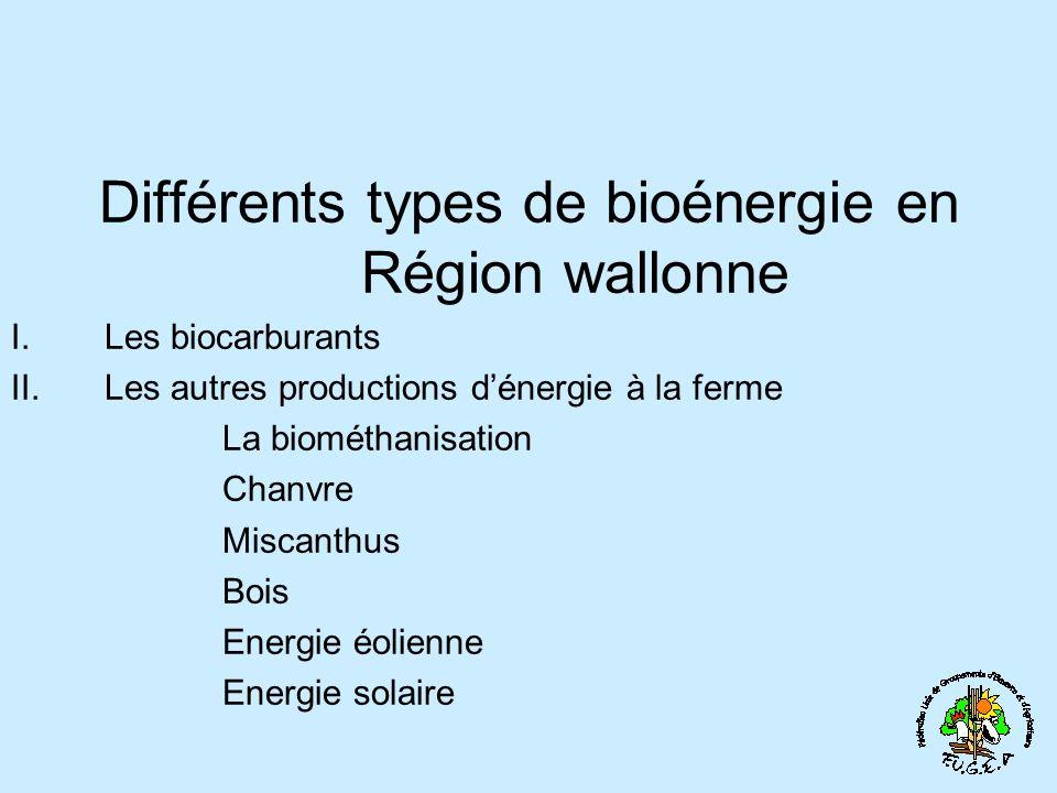 Différents types de bioénergie en Région wallonne