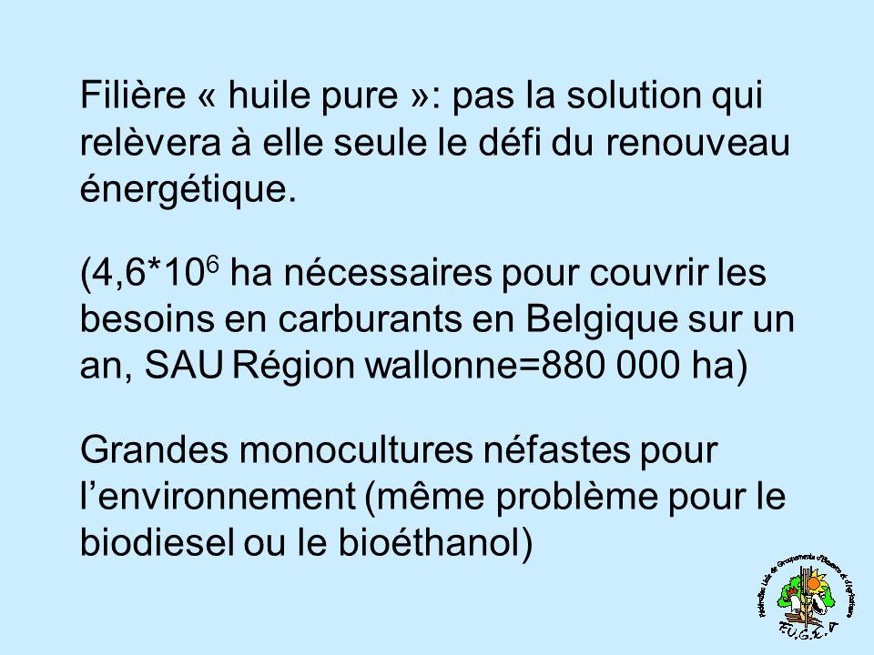 Filière « huile pure »: pas la solution qui relèvera à elle seule le défi du renouveau énergétique.