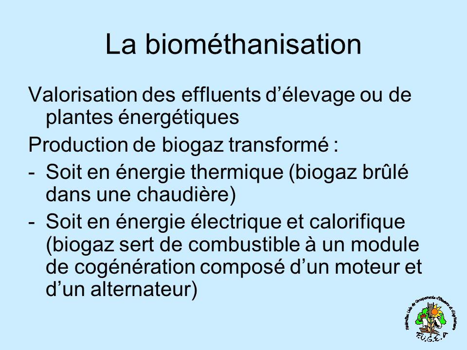 La biométhanisation Valorisation des effluents d'élevage ou de plantes énergétiques. Production de biogaz transformé :
