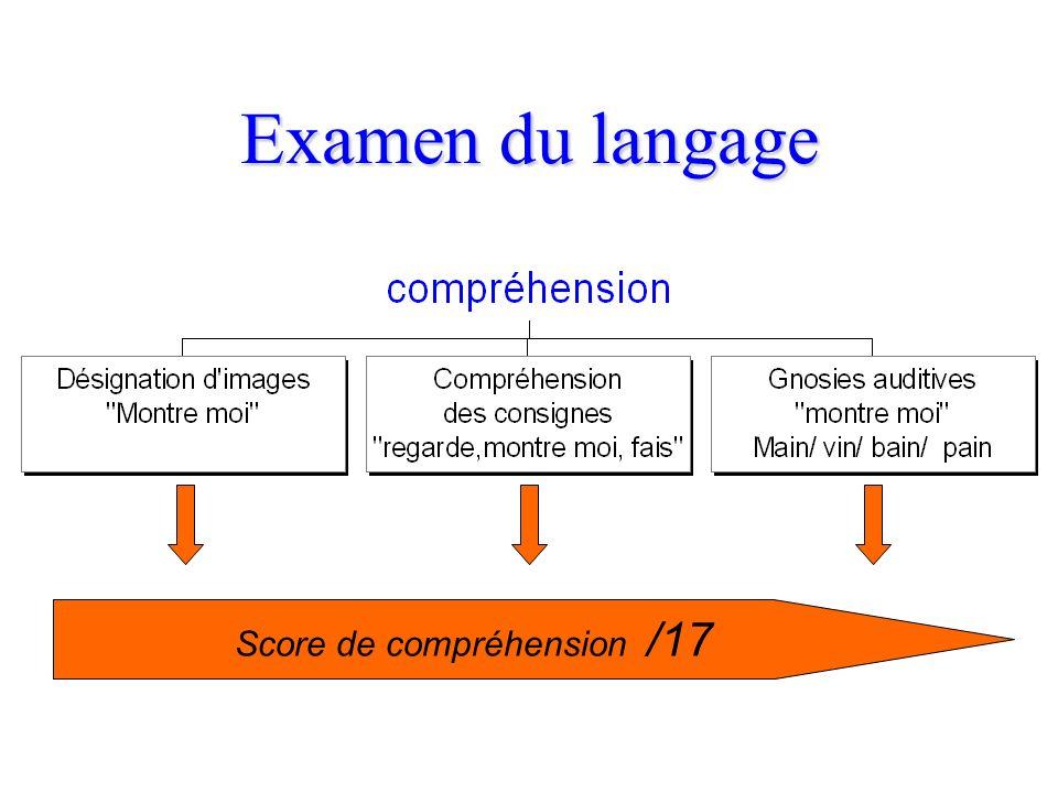 Score de compréhension /17