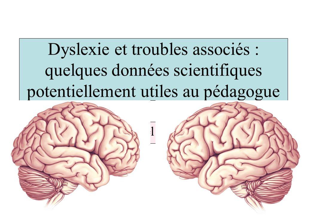 Dyslexie et troubles associés : quelques données scientifiques potentiellement utiles au pédagogue