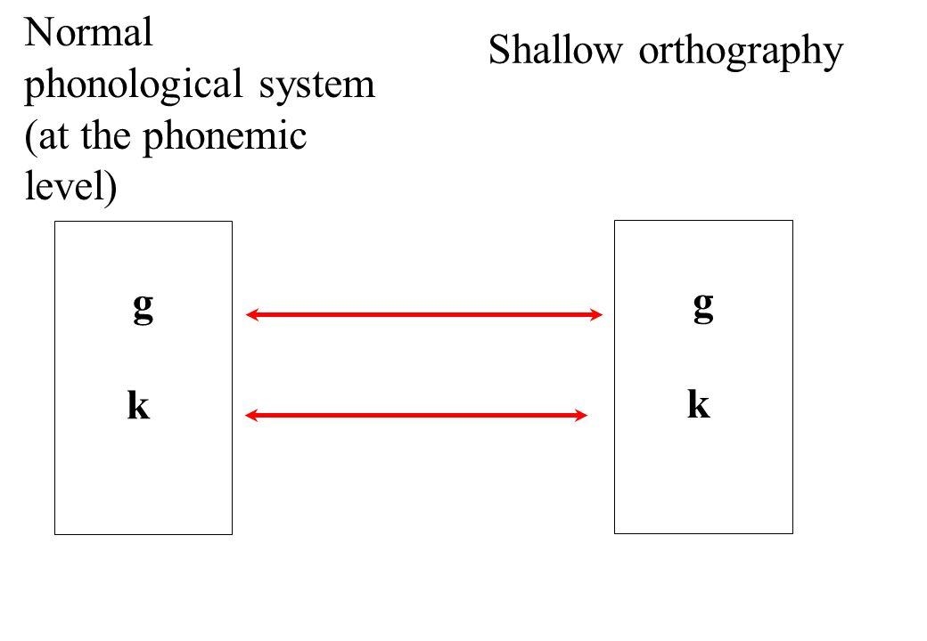 Normal phonological system (at the phonemic level)