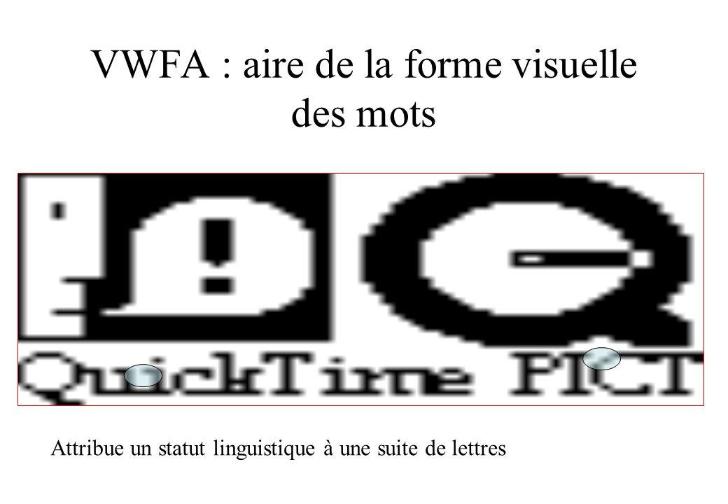 VWFA : aire de la forme visuelle des mots