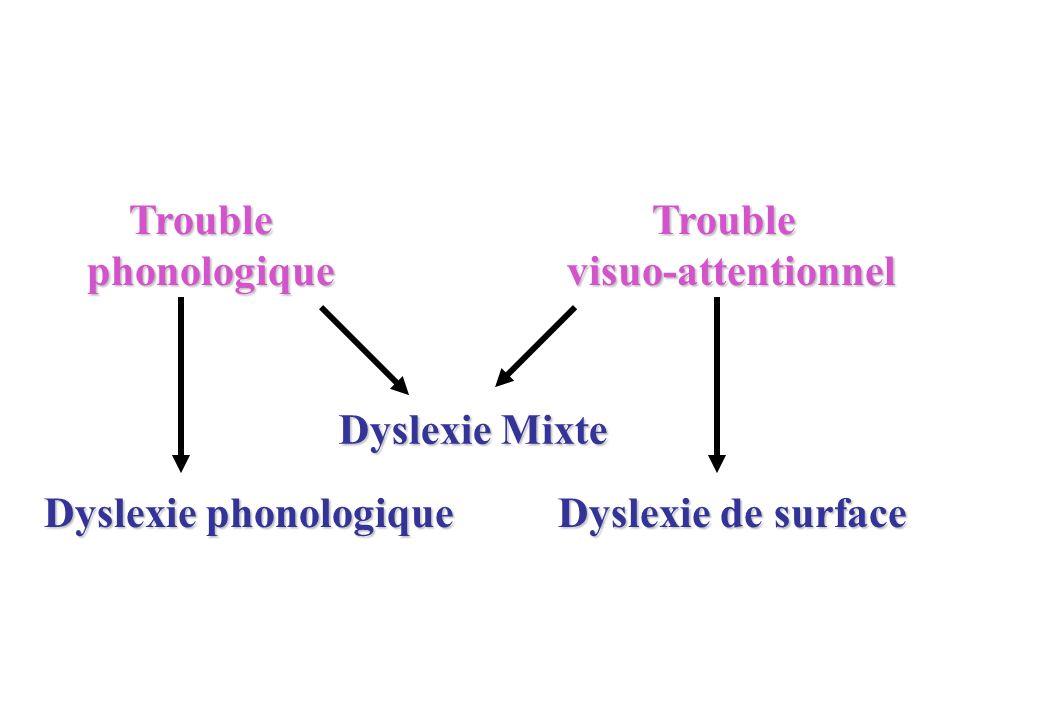 Trouble phonologique. Trouble. visuo-attentionnel.