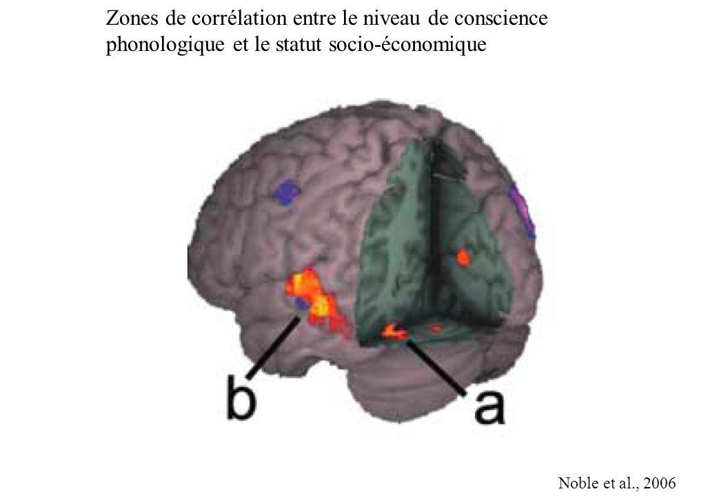 Zones de corrélation entre le niveau de conscience phonologique et le statut socio-économique