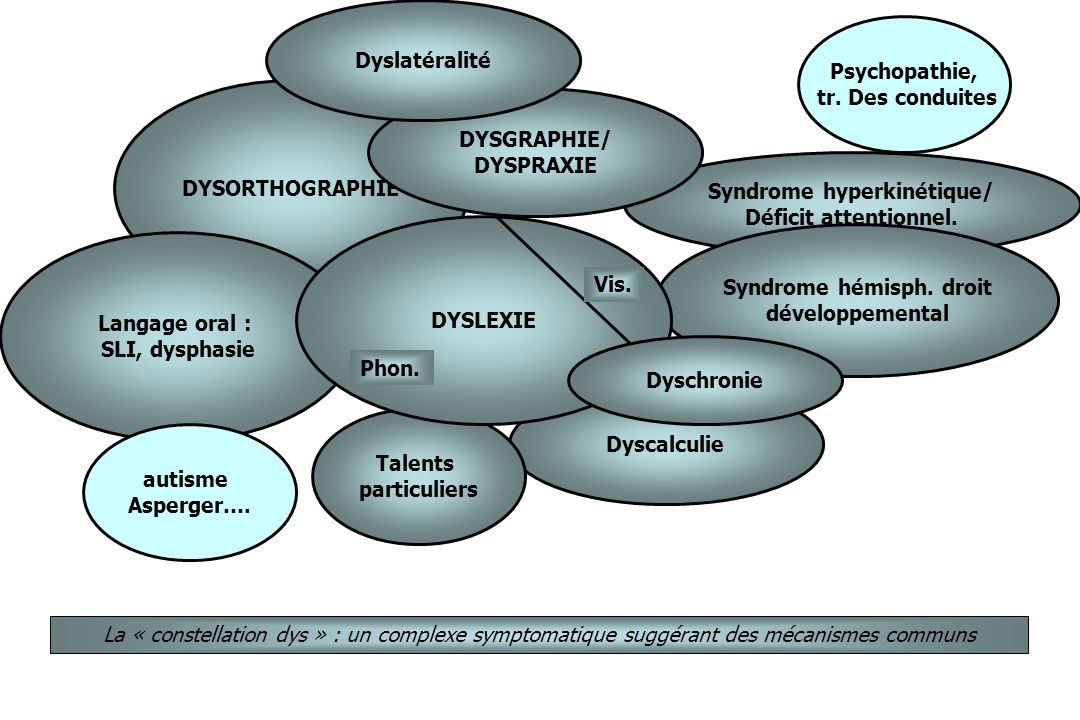 Syndrome+hyperkin%C3%A9tique%2F+Syndrome+h%C3%A9misph.+droit proprioception dans SED