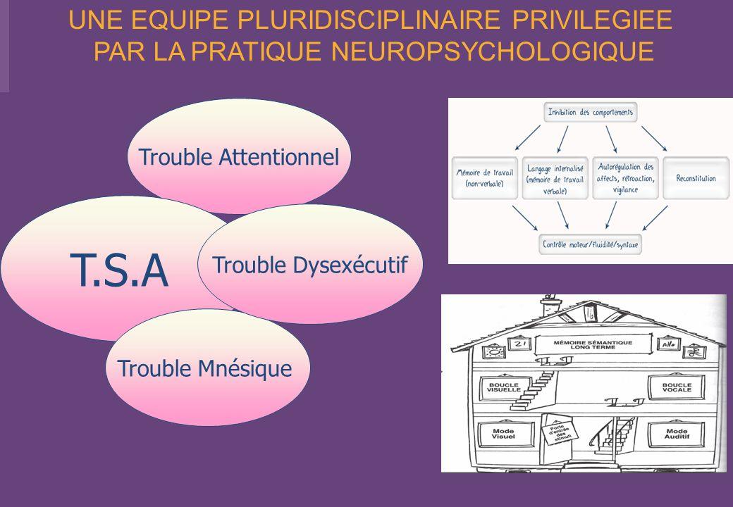 T.S.A UNE EQUIPE PLURIDISCIPLINAIRE PRIVILEGIEE