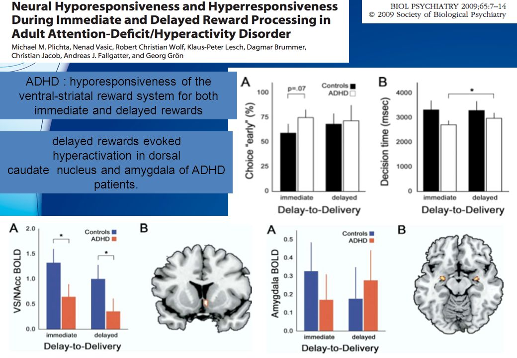 delayed rewards evoked hyperactivation in dorsal