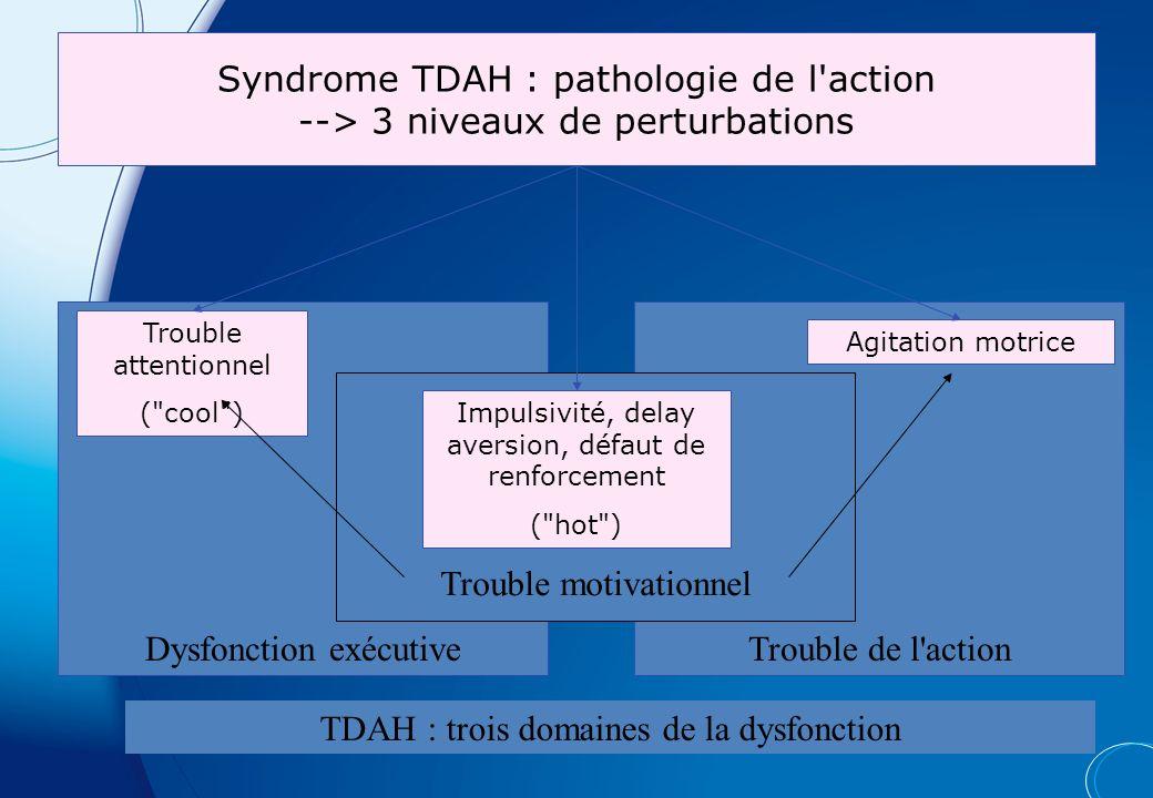 Dysfonction exécutive Trouble de l action Trouble motivationnel