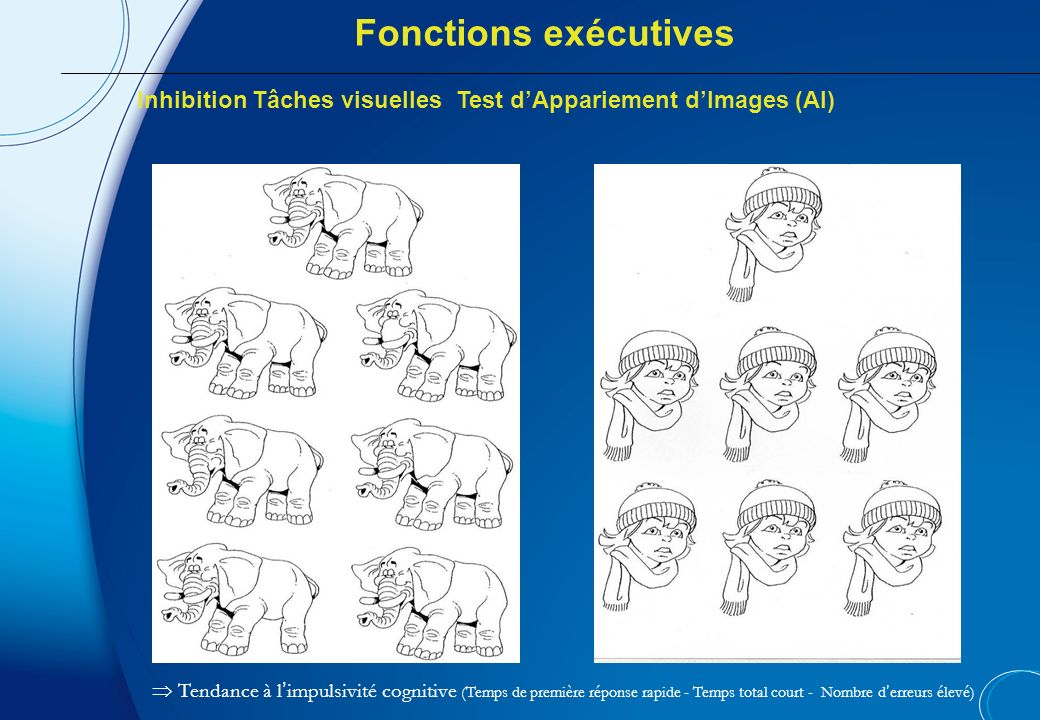 Fonctions exécutives Inhibition Tâches visuelles Test d'Appariement d'Images (AI)