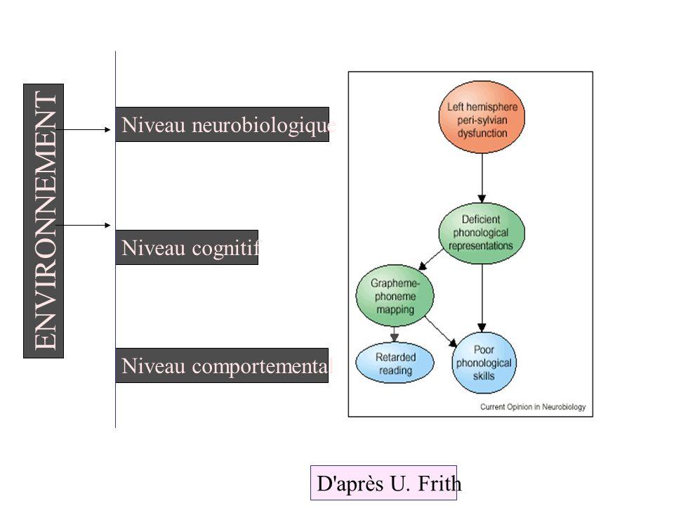 ENVIRONNEMENT Niveau neurobiologique Niveau cognitif