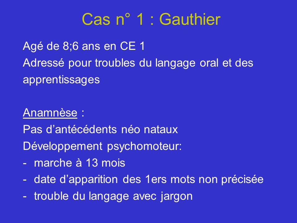 Cas n° 1 : Gauthier Agé de 8;6 ans en CE 1