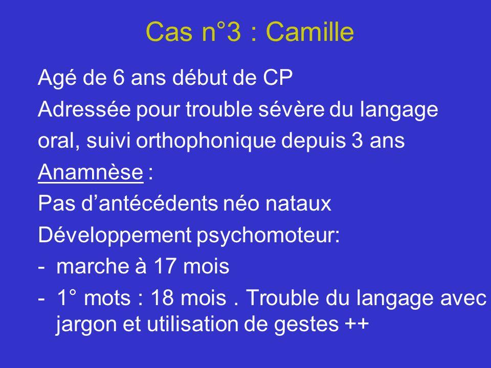 Cas n°3 : Camille Agé de 6 ans début de CP