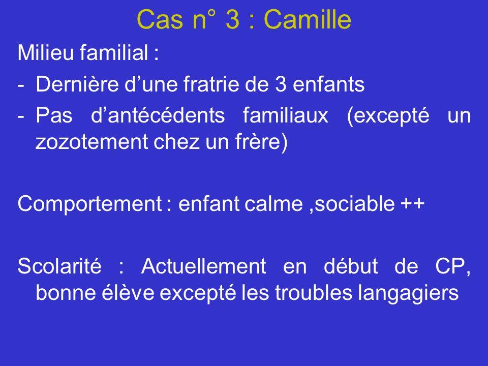 Cas n° 3 : Camille Milieu familial :
