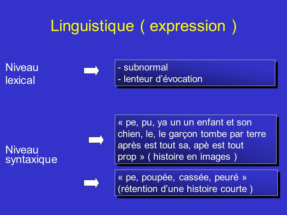 Linguistique ( expression )