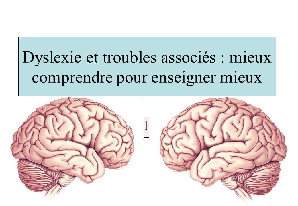 Dyslexie et troubles associés : mieux comprendre pour enseigner mieux