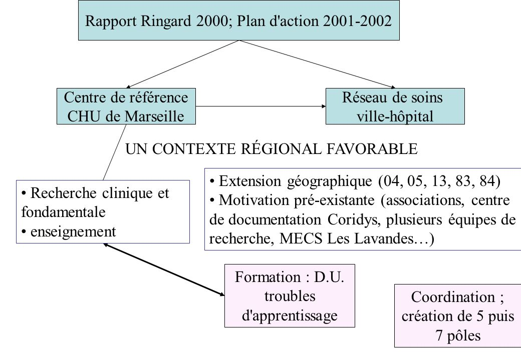 Rapport Ringard 2000; Plan d action 2001-2002