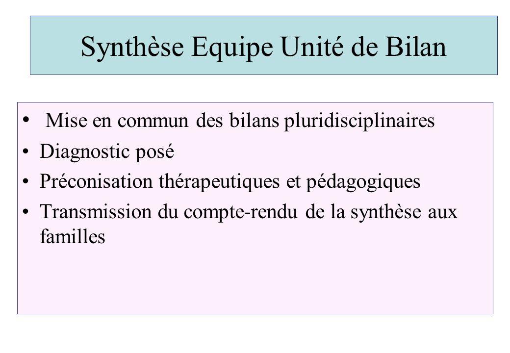 Synthèse Equipe Unité de Bilan