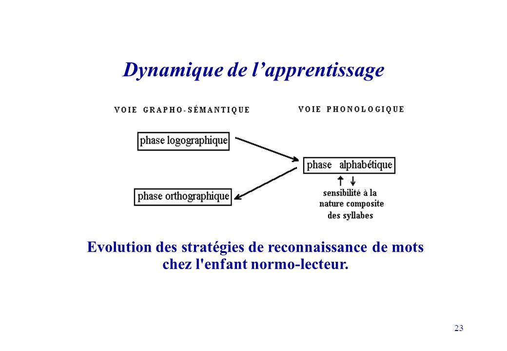 Dynamique de l'apprentissage
