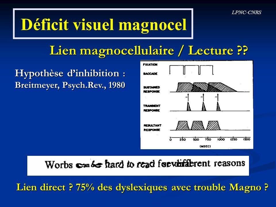 Déficit visuel magnocel
