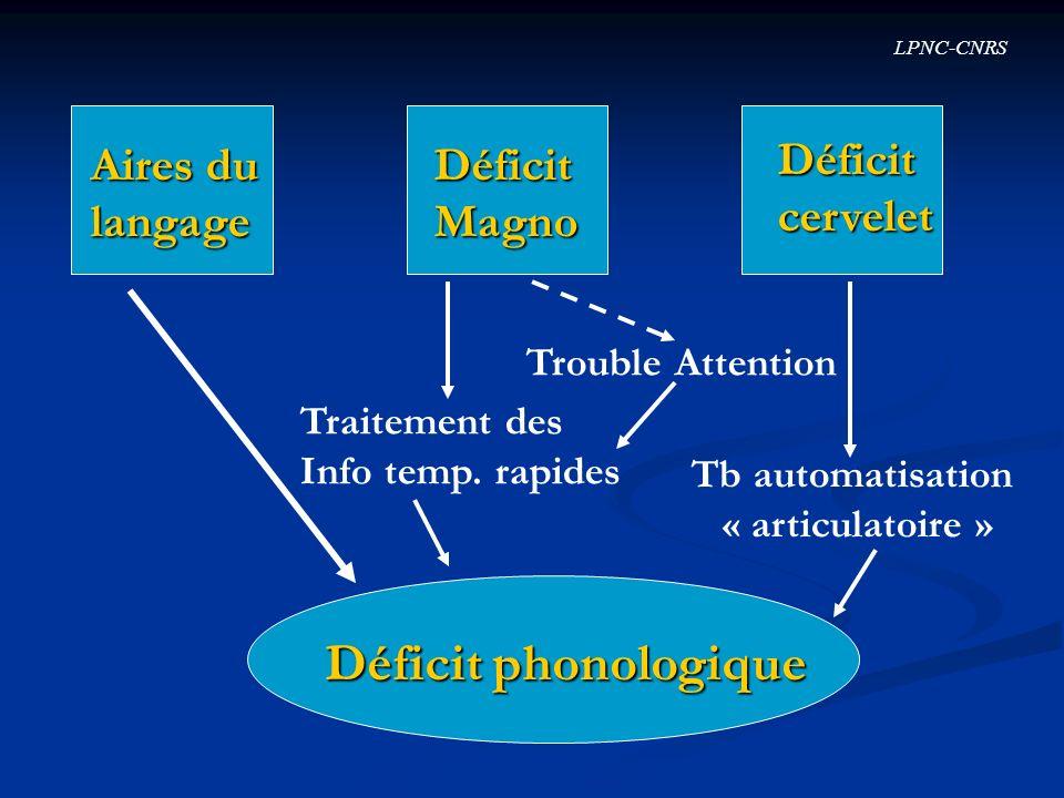 Déficit phonologique Aires du langage Déficit Magno Déficit cervelet