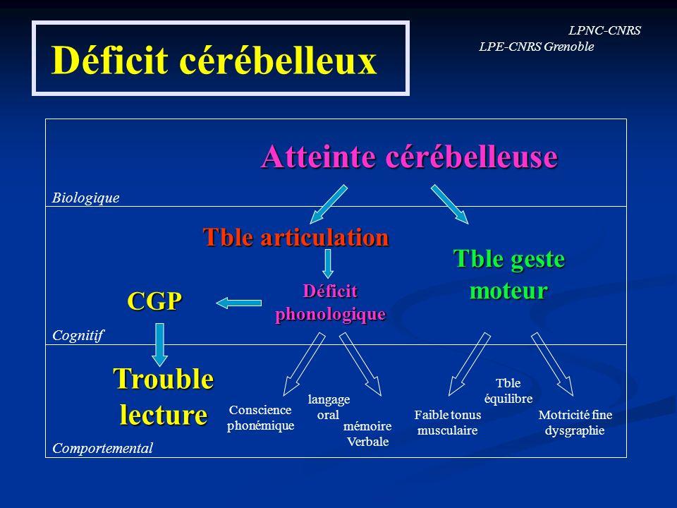Déficit cérébelleux Atteinte cérébelleuse Trouble lecture