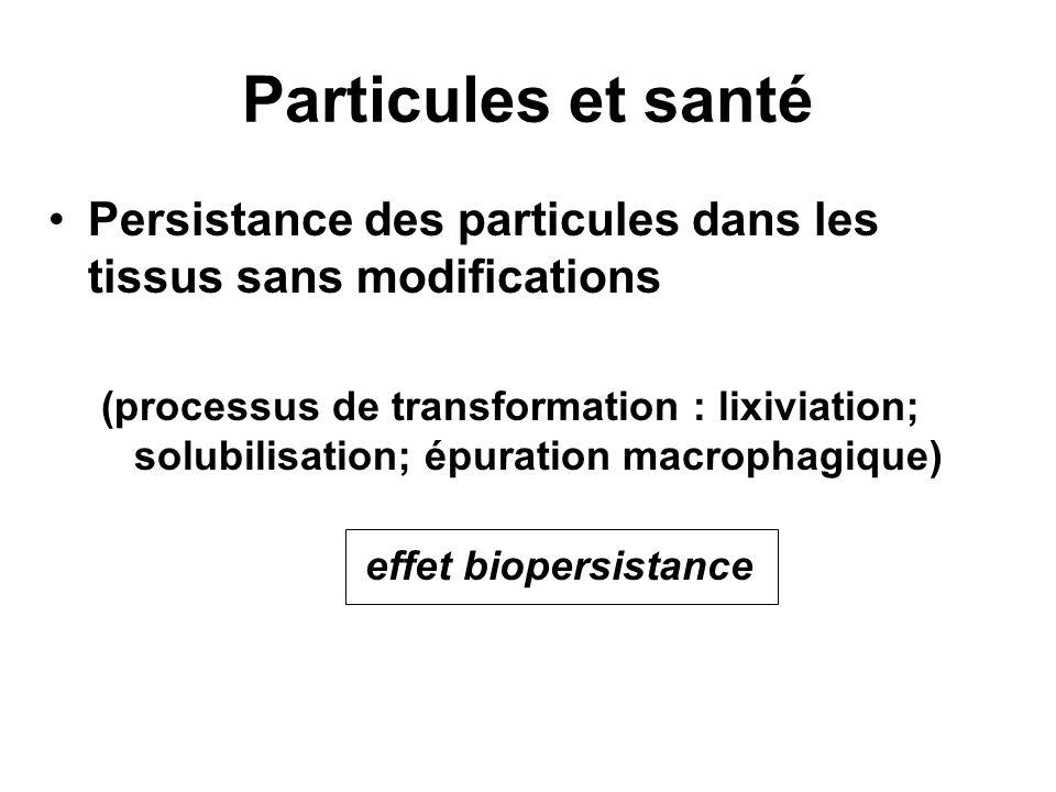 Particules et santé Persistance des particules dans les tissus sans modifications.