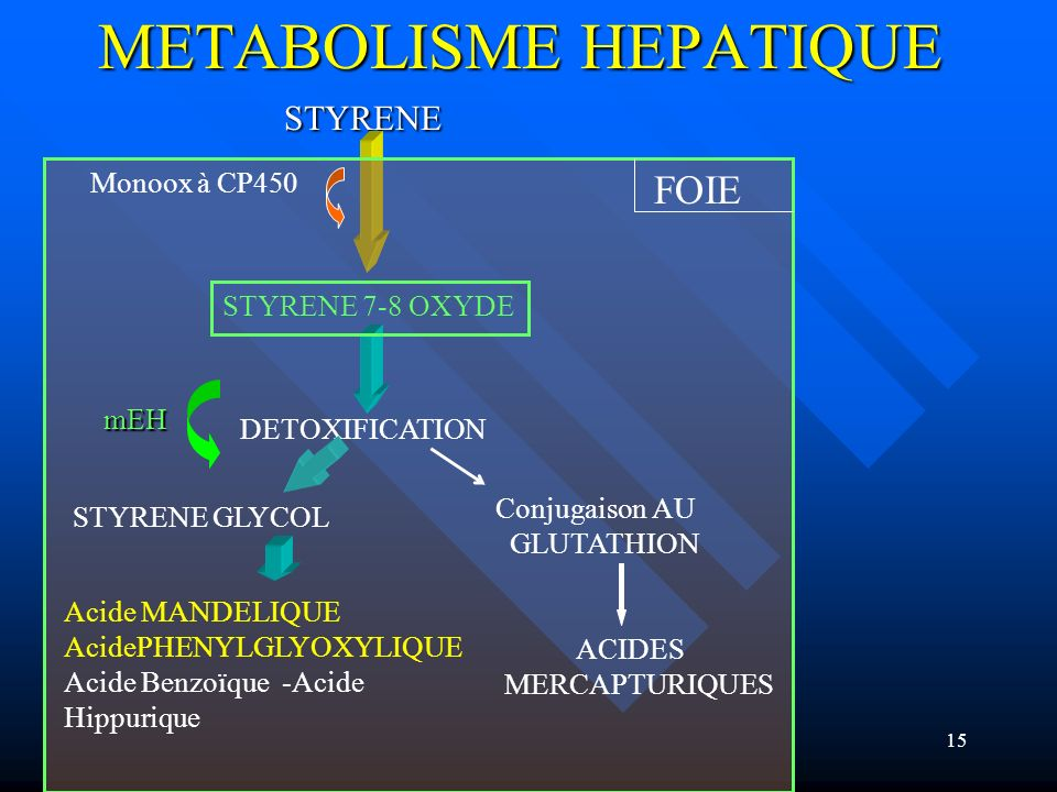 METABOLISME HEPATIQUE
