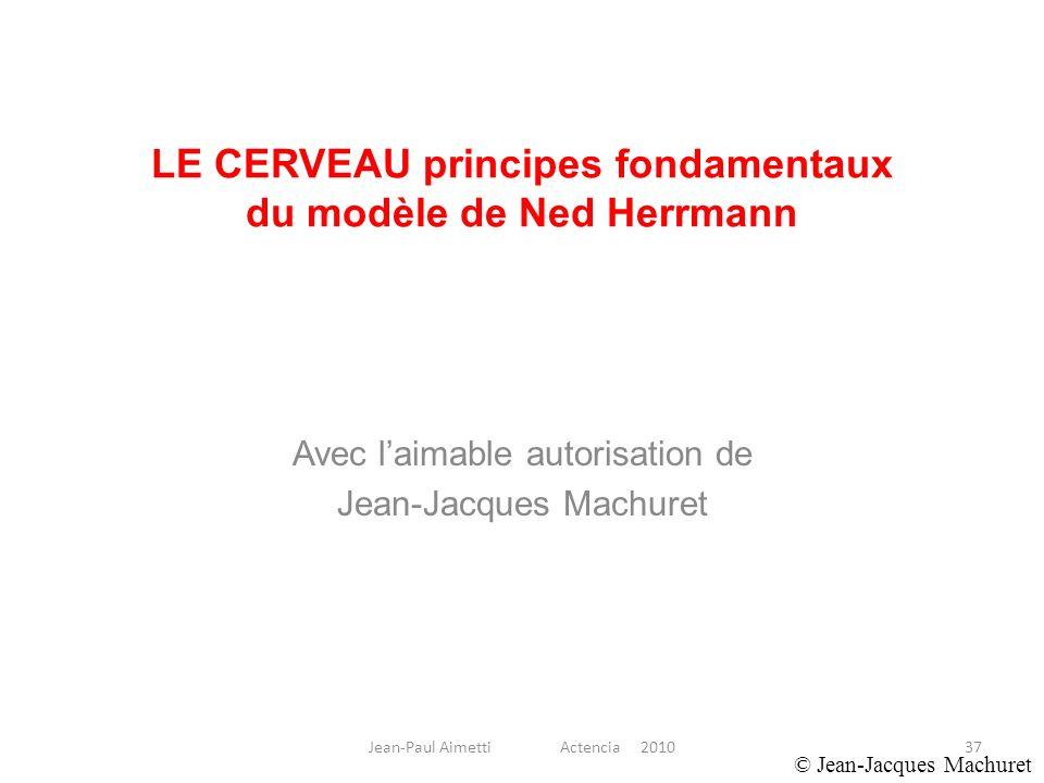 LE CERVEAU principes fondamentaux du modèle de Ned Herrmann