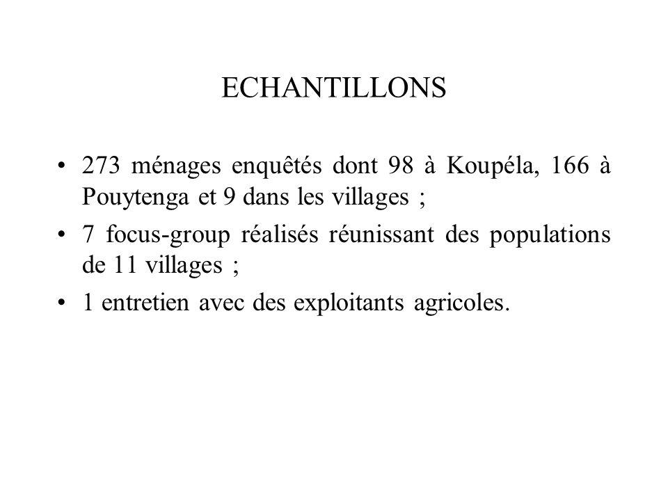 ECHANTILLONS 273 ménages enquêtés dont 98 à Koupéla, 166 à Pouytenga et 9 dans les villages ;