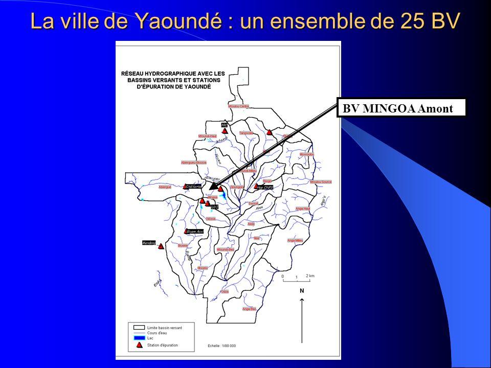 La ville de Yaoundé : un ensemble de 25 BV
