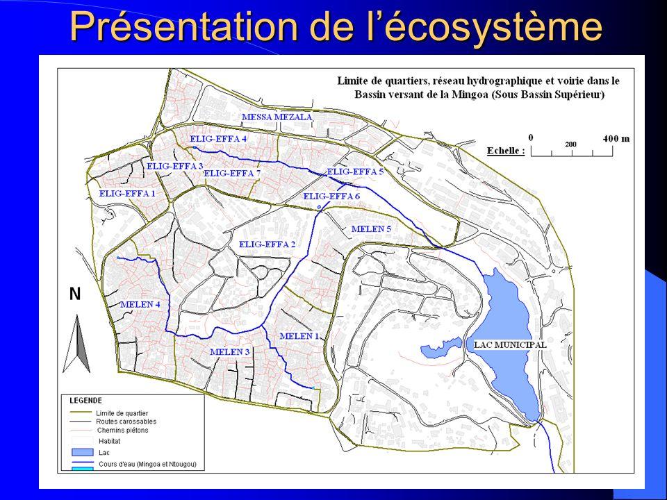 Présentation de l'écosystème