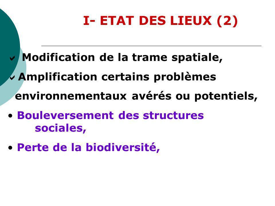 I- ETAT DES LIEUX (2)  Modification de la trame spatiale,