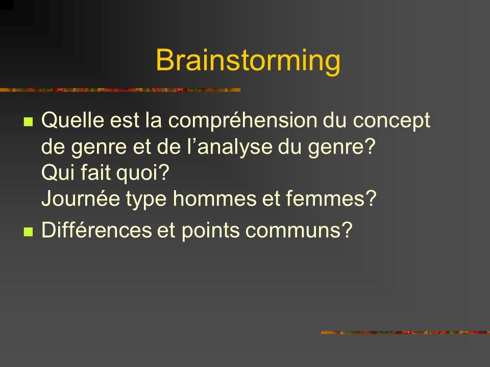 Brainstorming Quelle est la compréhension du concept de genre et de l'analyse du genre Qui fait quoi Journée type hommes et femmes