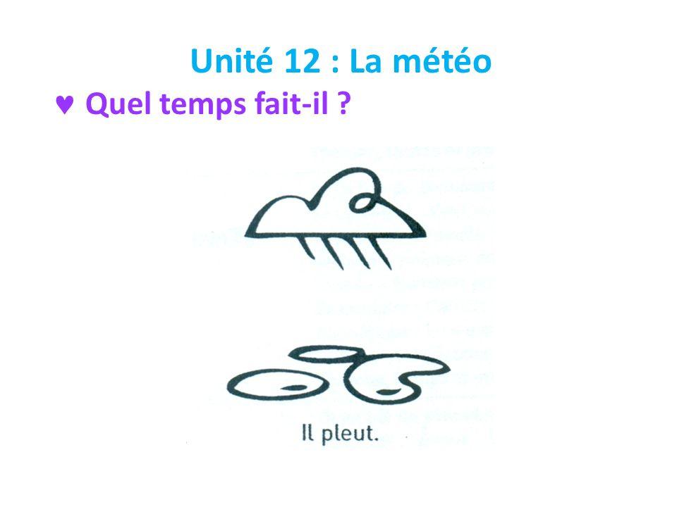 Unité 12 : La météo Quel temps fait-il