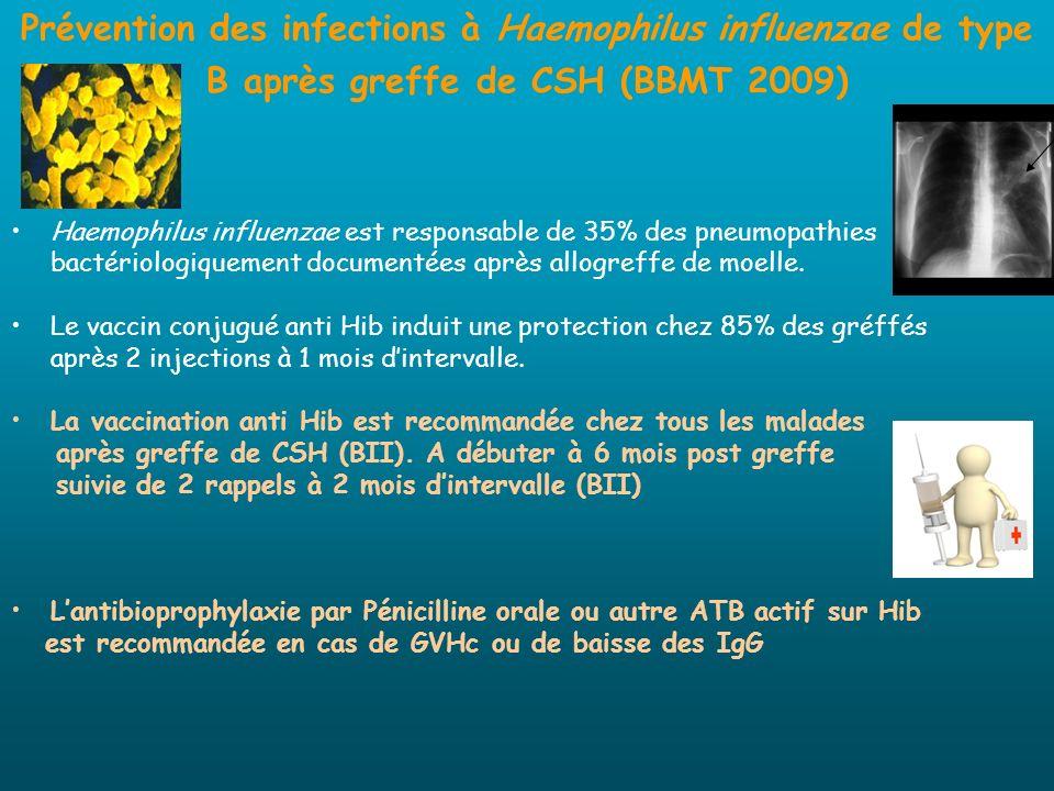Prévention des infections à Haemophilus influenzae de type B après greffe de CSH (BBMT 2009)