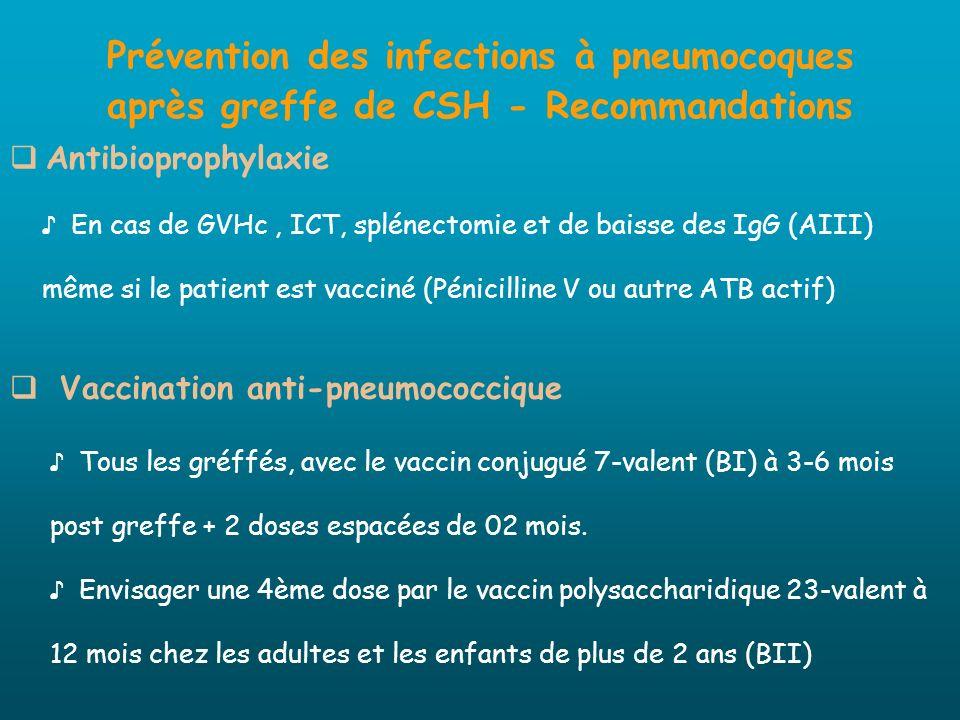 Prévention des infections à pneumocoques après greffe de CSH - Recommandations