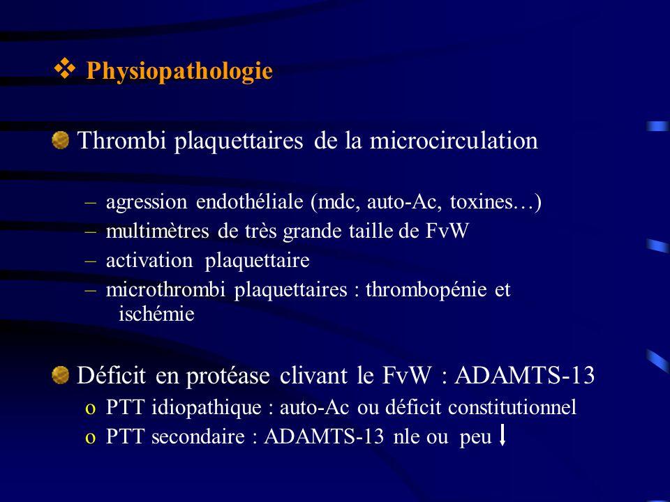 Physiopathologie Thrombi plaquettaires de la microcirculation