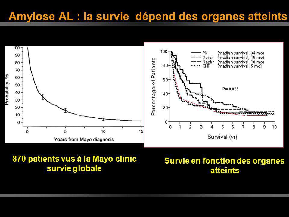 Amylose AL : la survie dépend des organes atteints