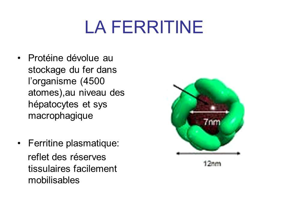 LA FERRITINE Protéine dévolue au stockage du fer dans l'organisme (4500 atomes),au niveau des hépatocytes et sys macrophagique.