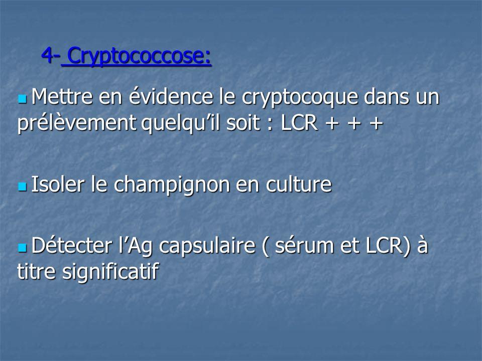 4- Cryptococcose:  Mettre en évidence le cryptocoque dans un prélèvement quelqu'il soit : LCR + + +
